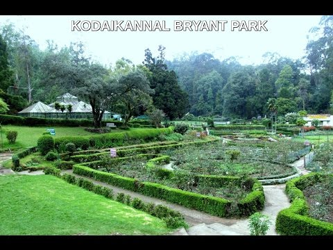 Best Tourist Places in Kodaikanal |Tourist Attractions|Tours guide|Latest|Kodaikanal ,India