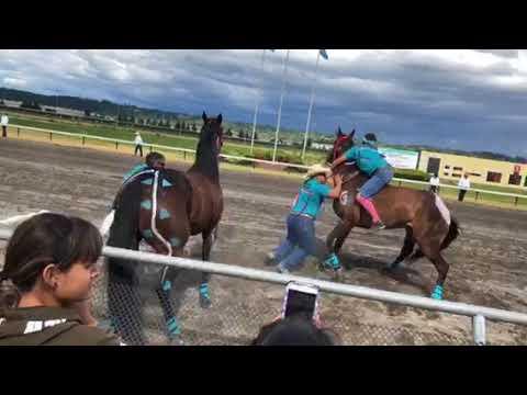 Emerald Downs 2018 Heat #2