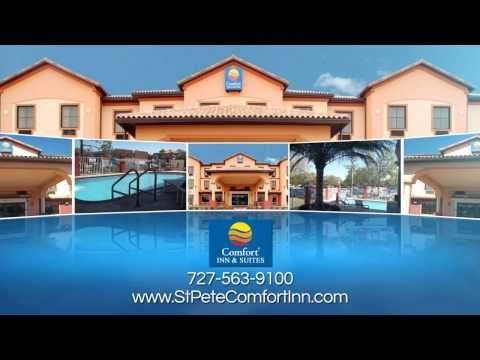 Best El And Rates In St Petersburg Clearwater Tampa Bay Area