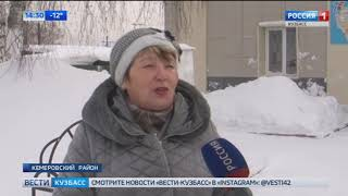 В Кузбассе мошенники собирали деньги на приют для несуществующих животных