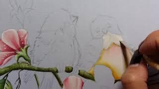 Passarinhos com Flores do Campo – Parte 4