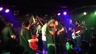 What the Funk - Πράσινο Βανάκι Jam Ft. Nikitas Klint,WOM,Felipe (Live)
