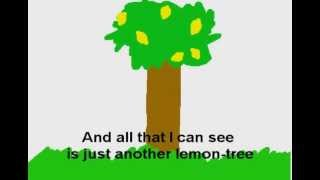LEMON TREE - Fool