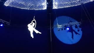 Опасные трюки под куполом цирка