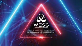 WORLD ELECTRONIC SPORTS GAMES 2018 #2