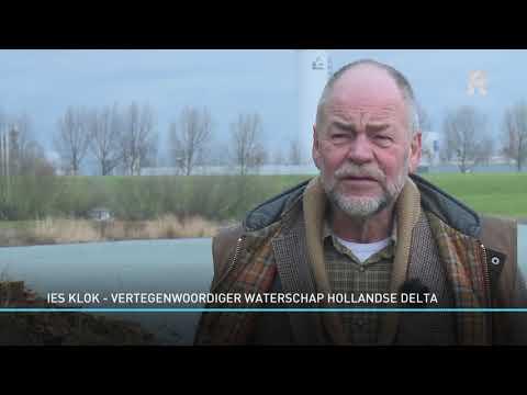 'Duizend knotwilgen kappen was blunder van waterschap'