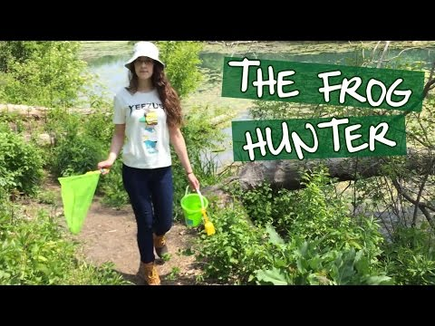 the frog hunter: a nature documentary
