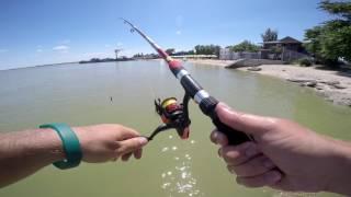 Рыбалка на Азовском море. Лиман. г.Ейск. Пляж гостиницы Парус.