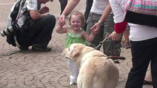 Project: Big Dog (guide Dogs Australia)