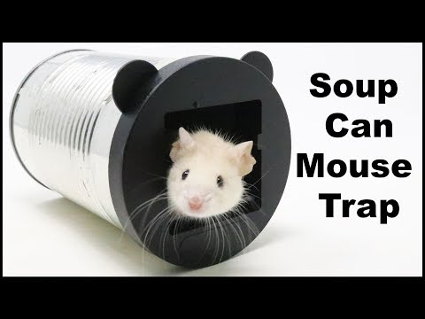 """The Soup Can Mouse Trap - UK Viewers Helped Me With My Mouse Trap """"Wish List"""" Mousetrap Monday"""