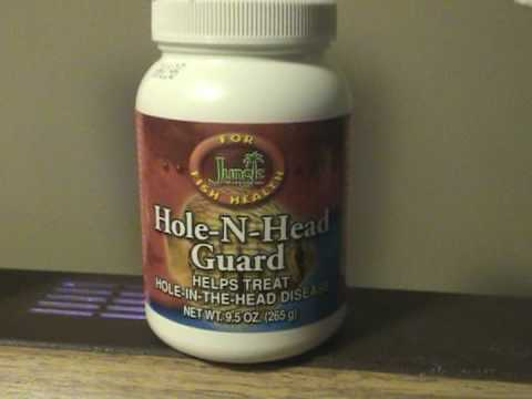 HOW TO CURE HITH HOLE IN THE HEAD!!