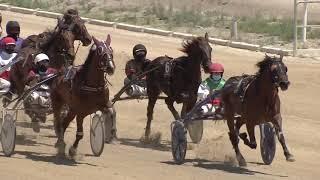 Vidéo de la course PMU PREMI MONIVA DI