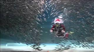 Предколедно подводно шоу в Южна Корея