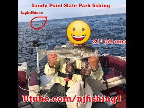 Sandy Point State Park Boating And Fishing - Caught 3 Stripe Bass (1 Keeper)