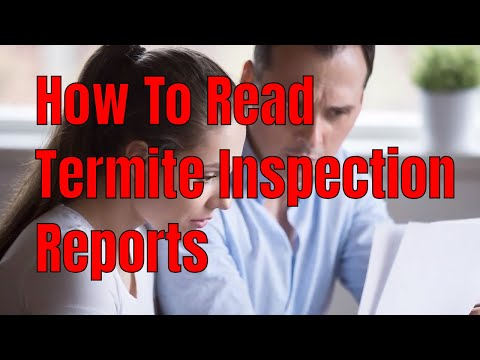 How to Read Termite Inspection Reports 🕵️