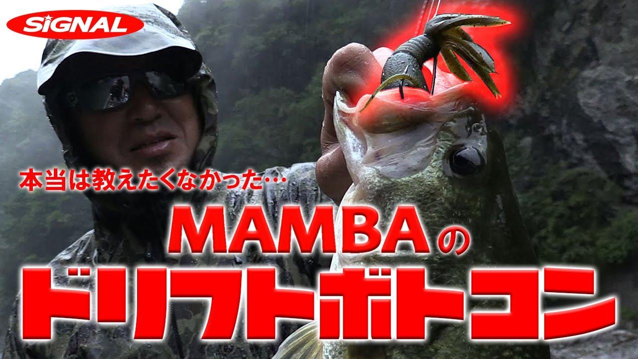 マンバ シグナル
