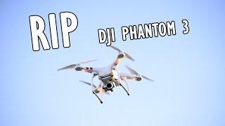 drone vs hornets