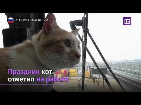Необычный смотритель Крымского моста празднует День Рождения