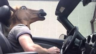 Video Arby's Horse Mask Drive Thru! download MP3, 3GP, MP4, WEBM, AVI, FLV Desember 2017