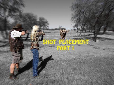SHOT PLACEMENT BIG GAME CAPE BUFFALO HIPPO
