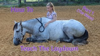 How To Teach Your Horse To Laydown (Part 1) No Ropes/No Force