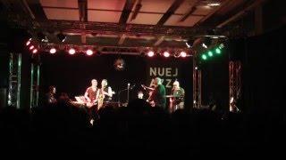 Tobias Weidingers T-Funk -Nuejazz Festival 2014 Lutz Häfner Christoph Huber Krishan Frehse