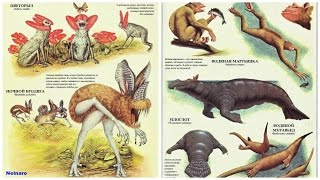 Откуда взялись|появились животные (и люди) на Земле | Происхождение (ч.1)