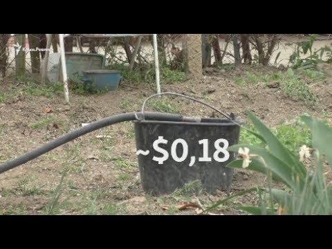 Тройные тарифы на воду: урожай крымских жителей под вопросом
