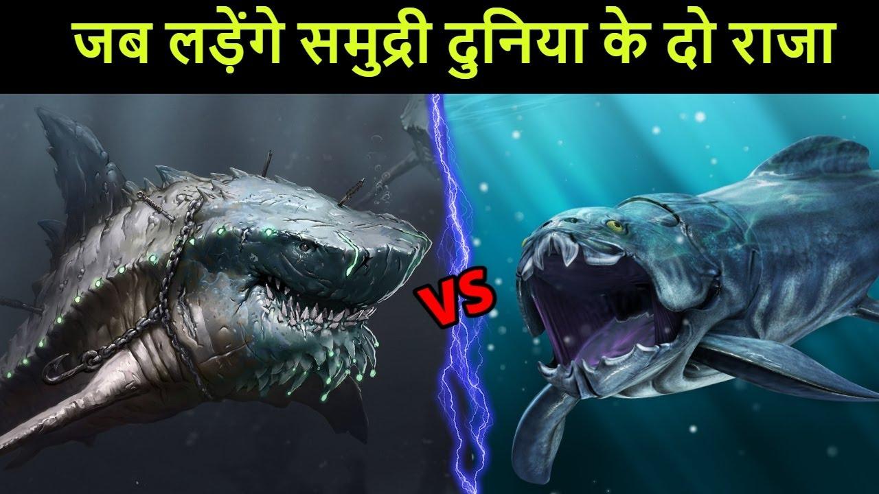 Megalodon vs Dunkleosteus जब लड़ेंगे समंदर की दो महाशक्ति