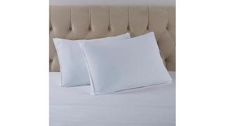 JOY Buy 1, Get 1 MemoryCloud Warm   Cool Universal Pillow