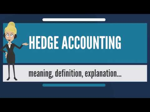 What is HEDGE ACCOUNTING? What does HEDGE ACCOUNTING mean? HEDGE ACCOUNTING meaning & explanation