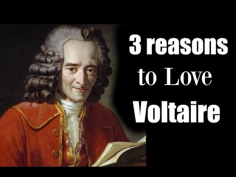 3 Reasons to Love Voltaire