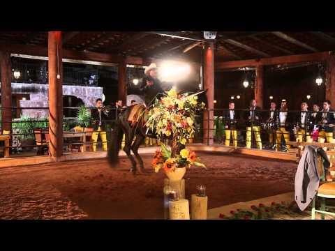 El Chapo De Sinaloa - Tranquilito (Video Oficial)