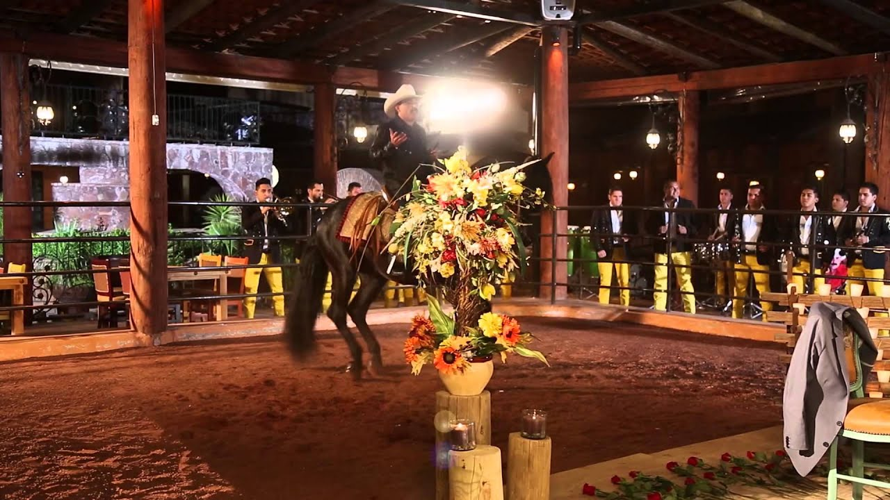 el chapo de sinaloa - tranquilito  video oficial