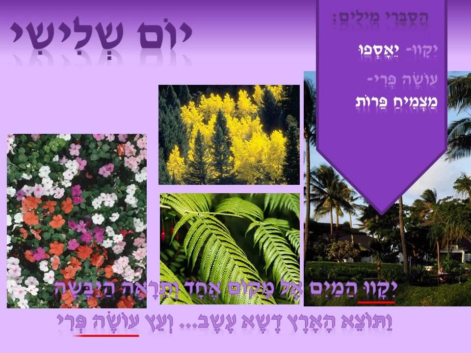 Four Seasons Rv >> בראשית- בריאת העולם - YouTube