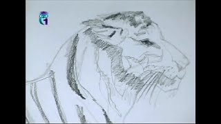 Уроки рисования (№ 50) карандашом. Рисуем животных. Часть 2(Передача