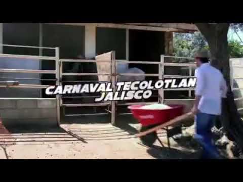 Download Voz de Mandó  Carnaval Tecolotlan 2019