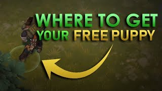 How to get FREE DOGS! [1.7.12] - Last day on Earth: Survival