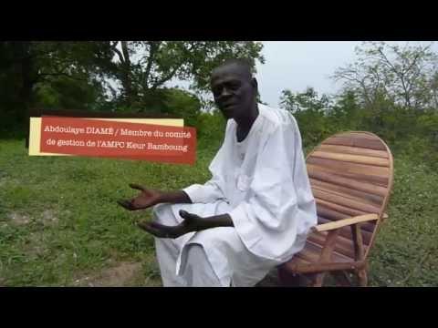 La 1ère aire marine protégée communautaire d'Afrique de l'Ouest (Sénégal)