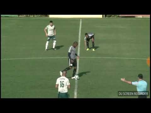 Jogo treino Palmeiras 1 x 1 red bull Brasil moises sai machucado