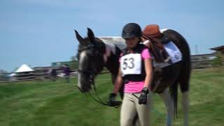 Canadian Horse Trials ft. cross country horse jumping