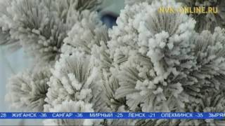 видео Погода в Якутии на 13 января