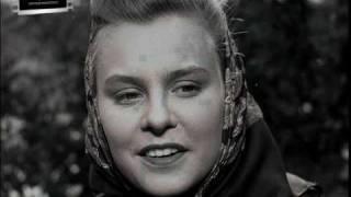 Magic Picture - Das Fräulein und der Vagabund