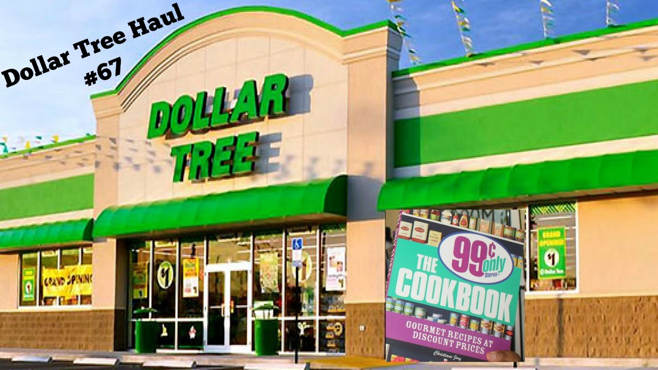Dollar Tree Haul 67 99 Cent Store Cookbook Find More