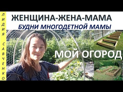 Мой огород в США. Сад и огород. Женщина-Жена-Мама Канал Лидии Савченко