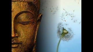 Зачем Нужна Дисциплина и Что развивается с при регулярной Медитации?