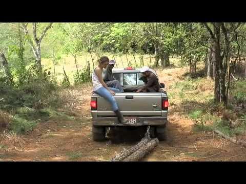 Panama EcoFarms 2013