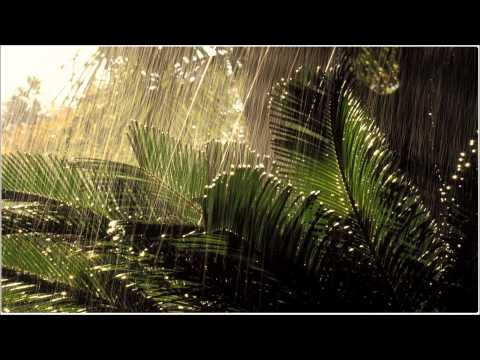 Thunderstorm in a Jungle 3D Sound Binaural (Use Headphones) ASMR