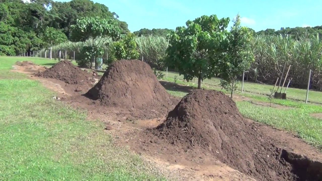 Backyard Bmx Jumps bmx trails cairns - youtube