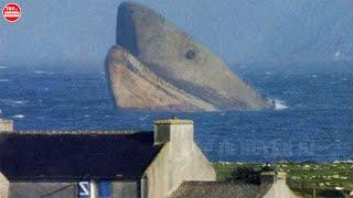 10 Lần Người Ta Nhìn Thấy Cá Mập Khổng Lồ Ngoài Đời Thực Chỉ Có Thể Là Megalodon Mà Thôi
